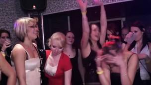 Delicious sluts pleasure cocks in an orgy